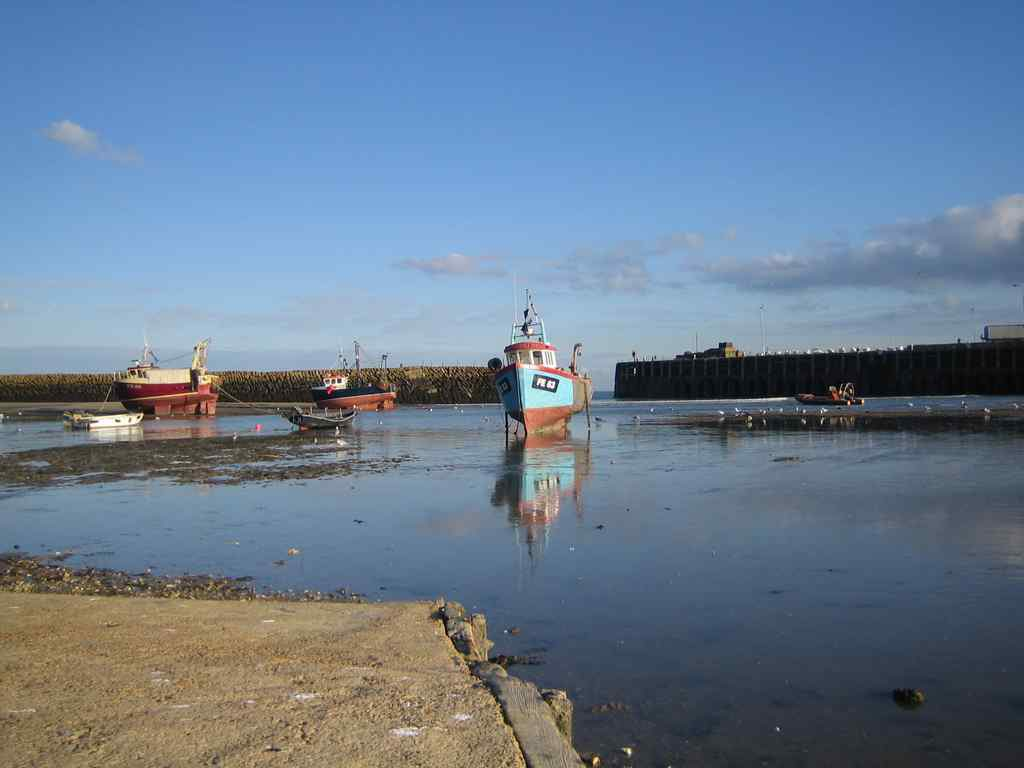FHC Sprachreisen - Folkestone, England - Hafen