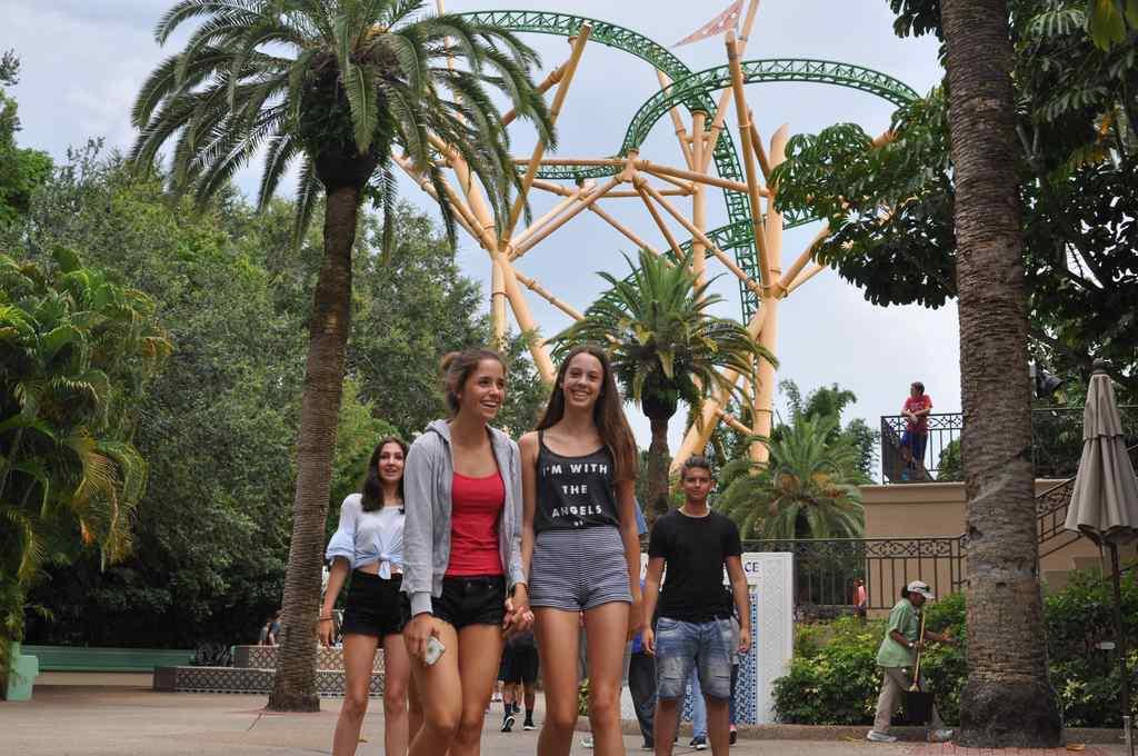 FHC Sprachreisen - Busch Gardens Florida Cheetah Hunt