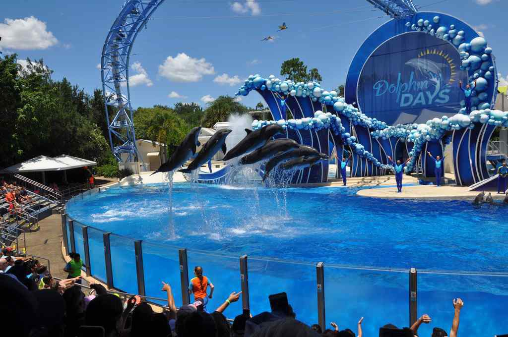 FHC Sprachreisen - Sea World Florida USA