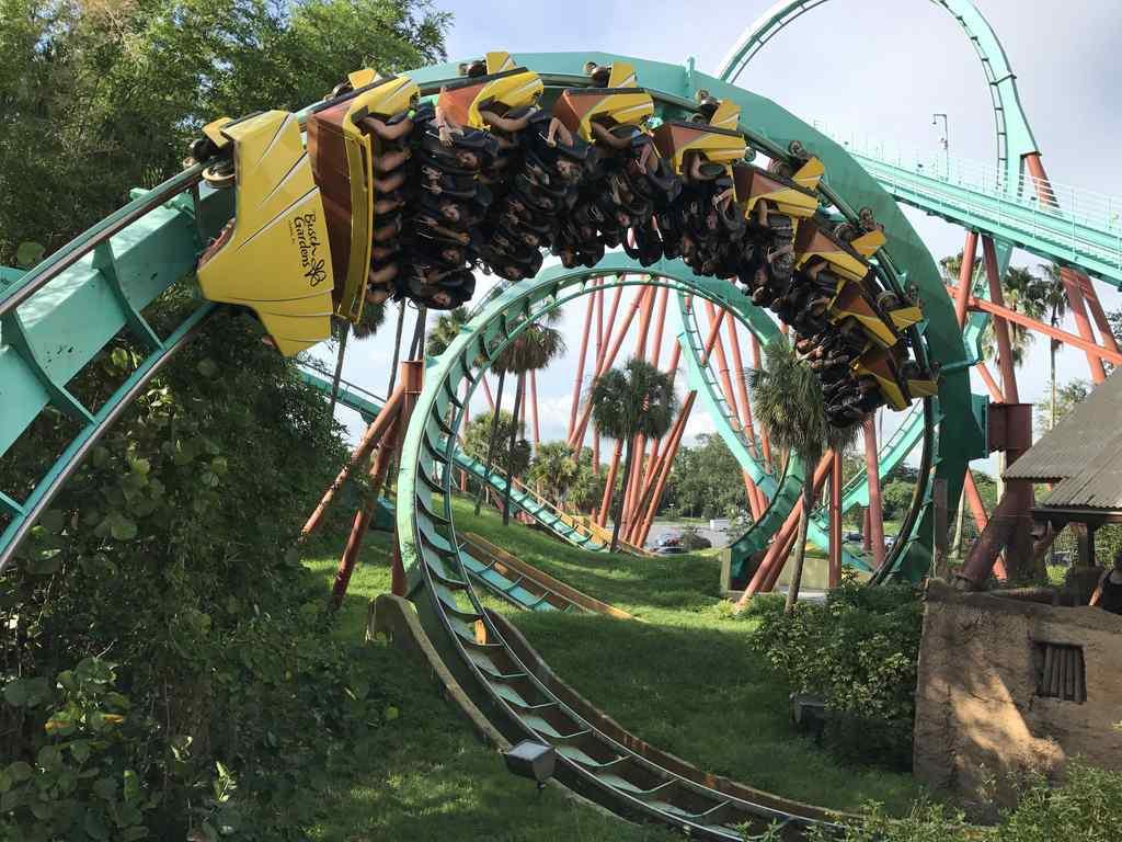 FHC Sprachreisen - Busch Gardens Florida USA